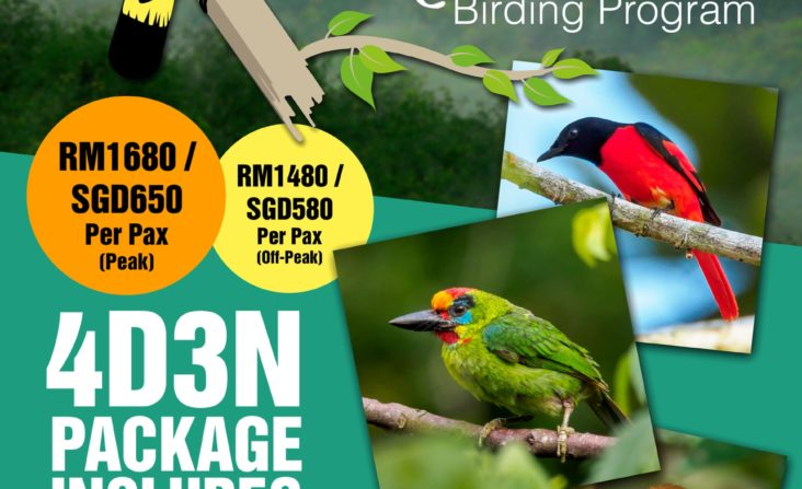 Back to Nature Birding Program